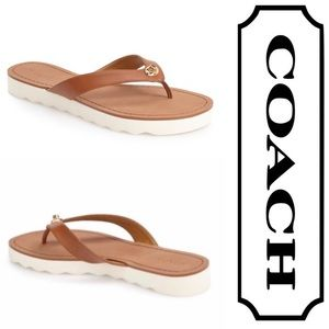 Coach Shelly flip flop sandals in brown, 9.5